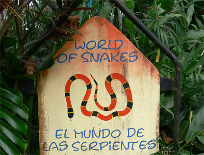 World of Snakes - Welt der Schlangen